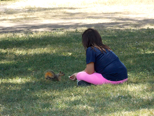 Feeding Squirrels | by Icky Pic