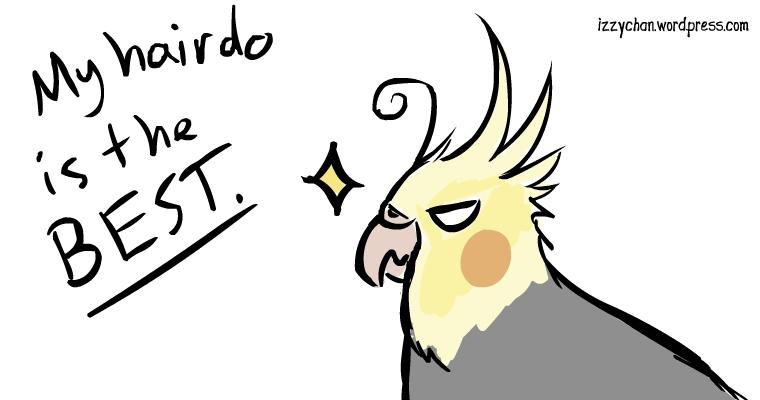 parrot hair best