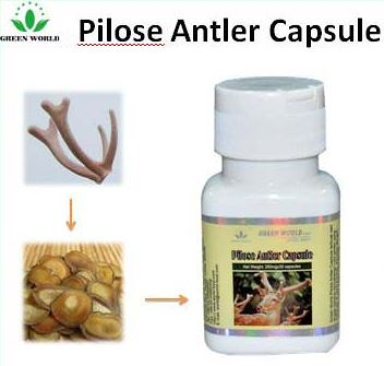 Pilose Antler Capsule Green World