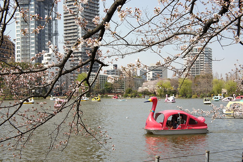 Ueno Park boating lake 03 | by JRH70