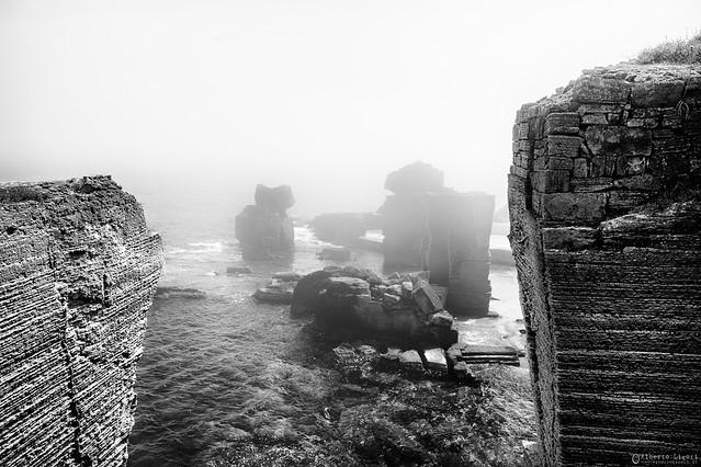 Archi nella nebbia