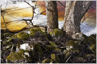 20120330. Trapped by ice and water. 5672. | by Tiina Gill (busy)