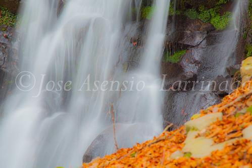 Parque natural de Gorbeia #DePaseoConLarri #Flickr      -2041