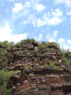 15 Gorges de Daluis
