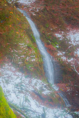 Parque Natural de #Gorbeia #DePaseoConLarri #Flickr      -2000