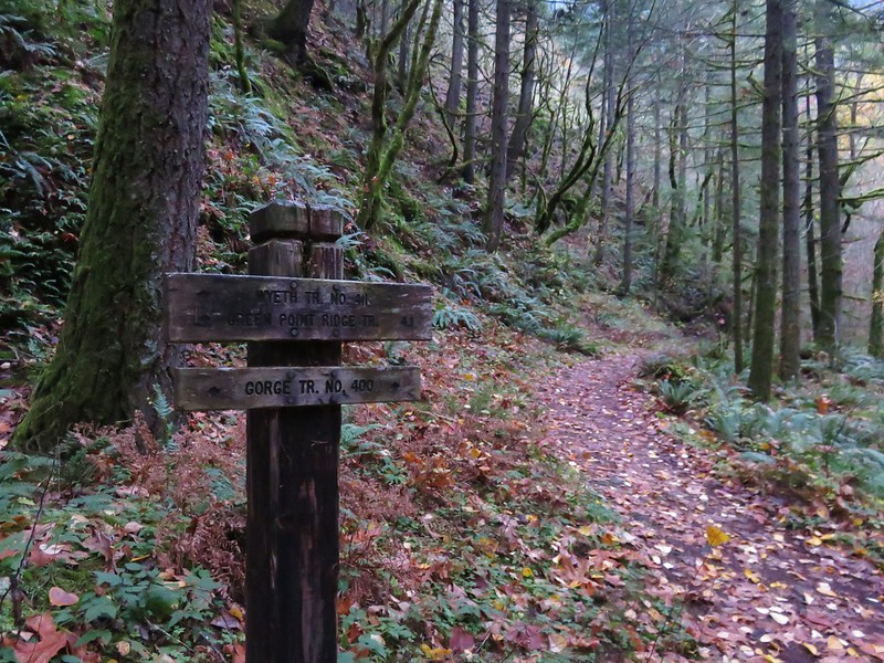 Wyeth Trail junction with the Gorge Trail