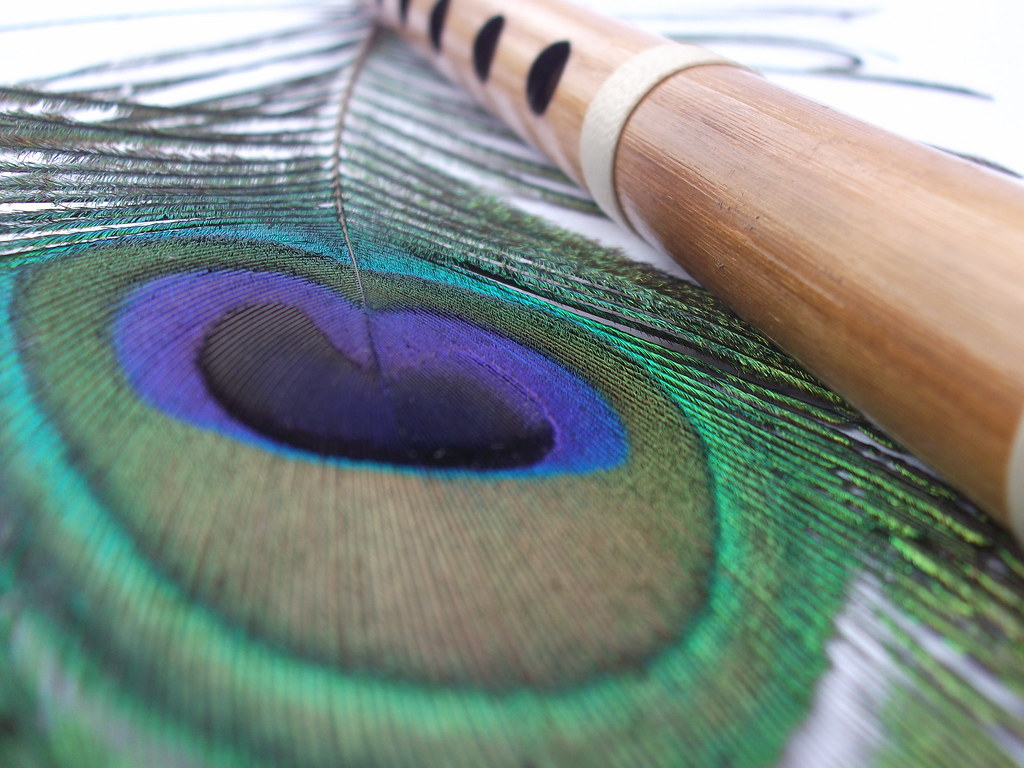 lord krishna s favourite the peacock s feather and the flu flickr