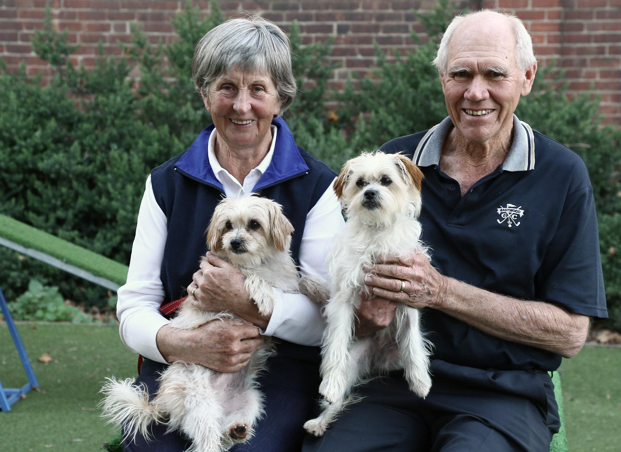 Lost Dogs Home Melbourne