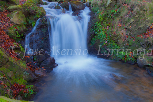 Parque Natural de Gorbeia   #DePaseoConLarri #Flickr      -2809