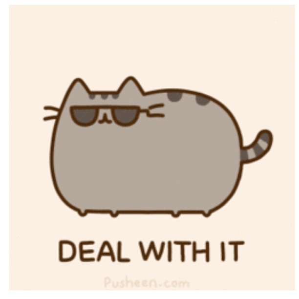9222707811_aac201bc28_z pusheen @pusheen cat cute lovely ❤ meme dealwithit flickr