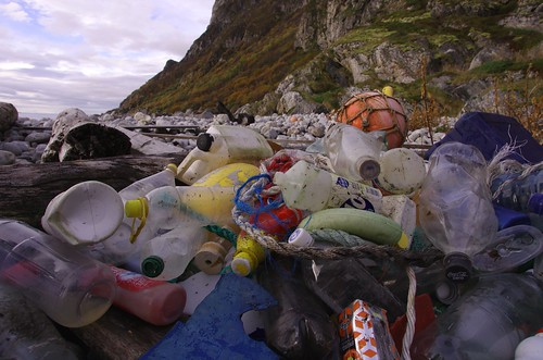 Marine litter. Most often found: Plastic pieces, bottles, rope, floats and buoys.