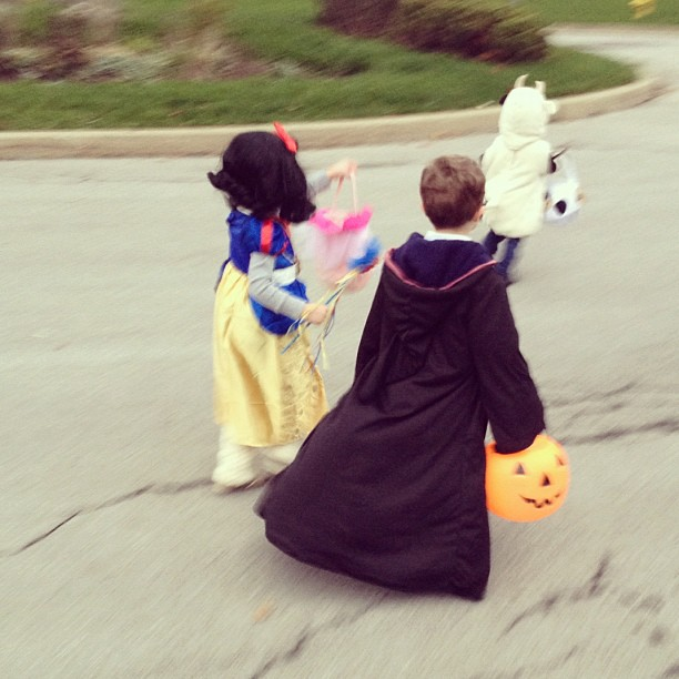 A cow, Snow White, and Harry Potter went in search of some candy... 🎃👻