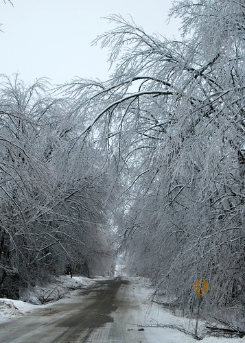 Ice Storm | by Lucie Veilleux jewelry