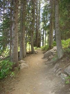 17 Wandelpad Jenny Lake
