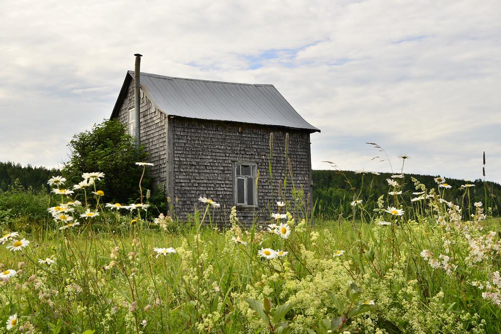 Maison et campagne mas provenal prs dco maison de - Maison de campagne en normandie ...