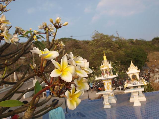Koh Si Chang