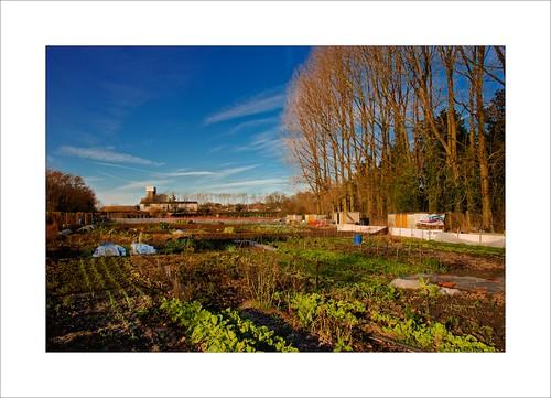 Jardins d 39 hiver napafloma photographe flickr - Jardins dhiver com ...