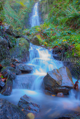 Parque Natural de Gorbeia #DePaseoConLarri #Flickr      -2818