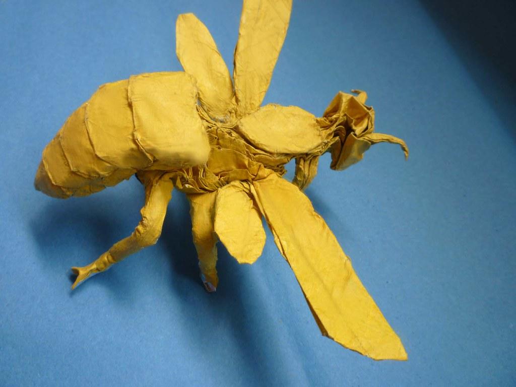 Origami Wasp 26 Satoshi Kamiya