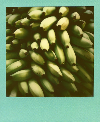 Plantains | by xoazuree