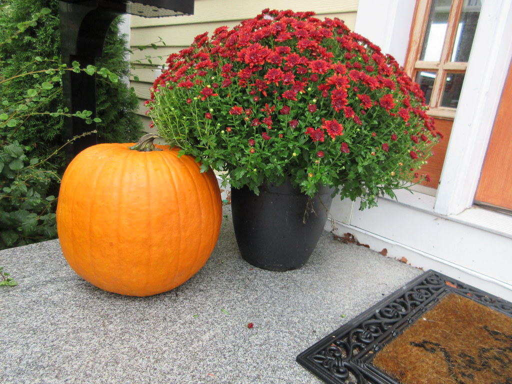 front porch decorated for halloween with pumpkin and red a… | flickr