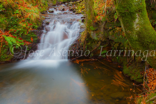 Parque natural de Gorbeia #DePaseoConLarri #Flickr      -2006