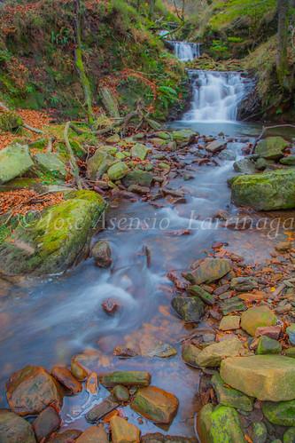 Parque natural de Gorbeia #DePaseoConLarri #Flickr      -2015