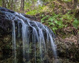 Tallest Waterfall in Florida! | by Wishard of Oz