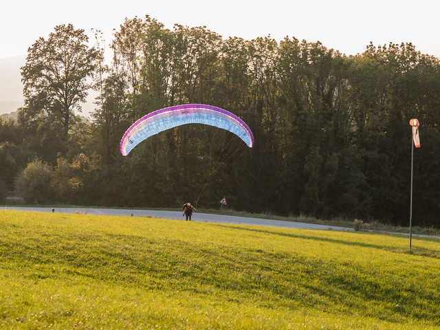 Shelley landing