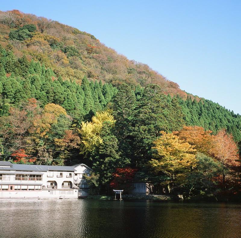金鱗湖|由布院
