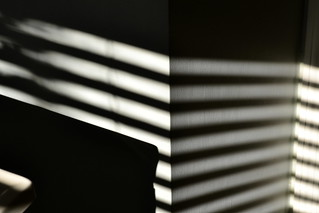 Venetian Blinds | by Marcy Leigh