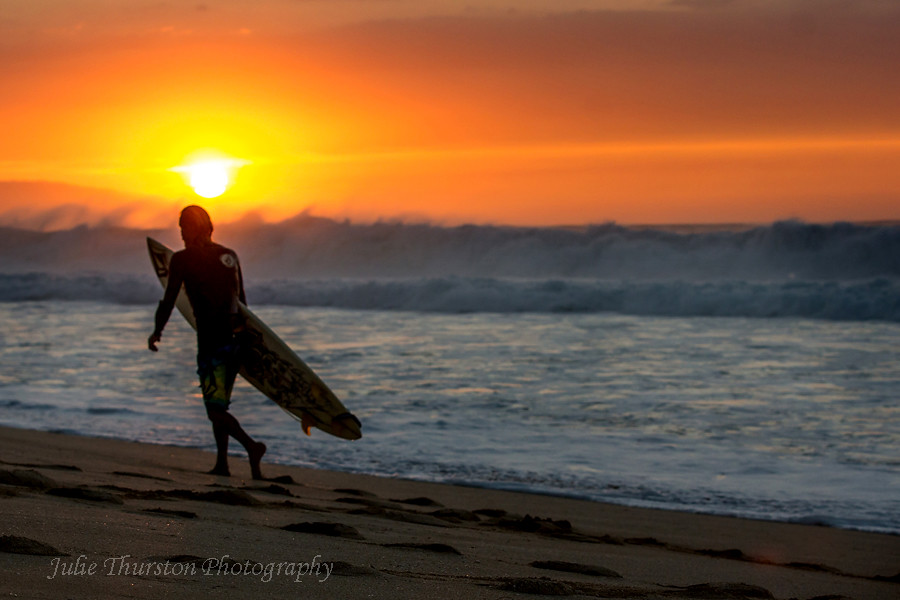 Surfer Heading Out At Sunset Surfing Hawaii