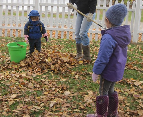 putting leaves in the bucket