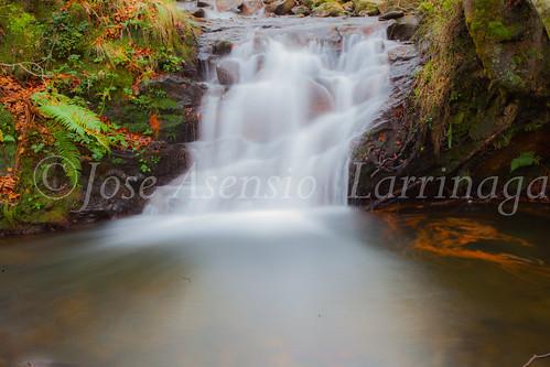Parque natural de Gorbeia #DePaseoConLarri #Flickr      -2013