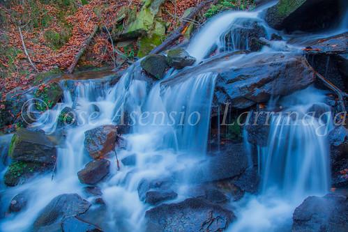 Parque Natural de Gorbeia   #DePaseoConLarri #Flickr      -2802