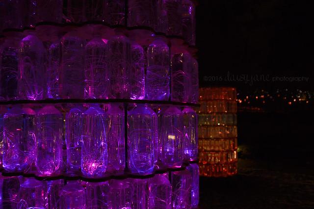 bruce light at arboretum-17web