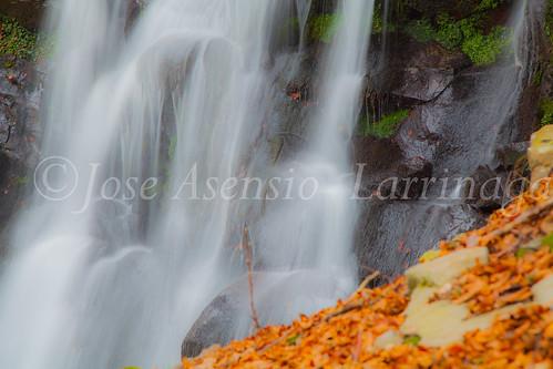 Parque natural de Gorbeia #DePaseoConLarri #Flickr      -2042
