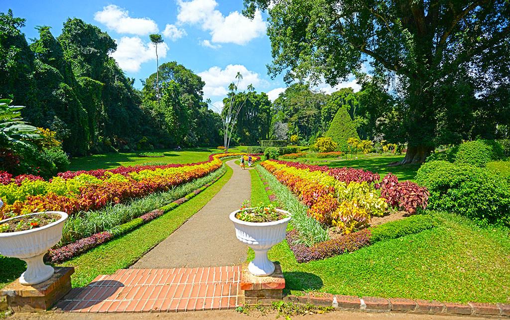 Royal Botanical Garden   Royal Botanical Garden, Peradeniya …   Flickr
