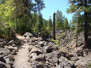 001 Trail naar Proxy Falls