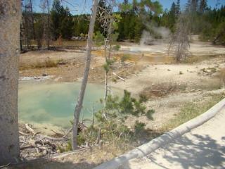 59 Norris - Back basin