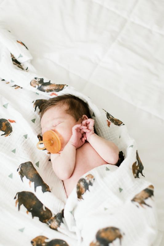 babyatticus-7494