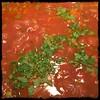 #Veal #Stew #homemade #CucinaDelloZio - add flat-leaf parsley s&p