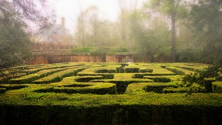 Maze / Colonial Williamsburg | by Nine is the Magic Number