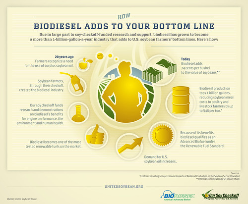 Biodiesel Adds to Your Bottom Line Infographic | by UnitedSoybeanBoard