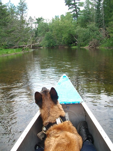 7/12/b Dazzle canoeing the Au Sable | by Scoutdogs (Chris)