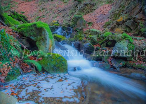 Parque Natural de Gorbeia   #DePaseoConLarri #Flickr      -2766