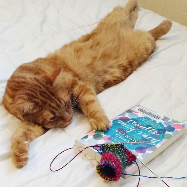 reading and knitting with George 😻 all I want to do for the rest of today. . . . #knittersofinstagram #knittersofig #craftastherapy #makersgonnamake #bookstagram #georgethecat #catsofinstagram