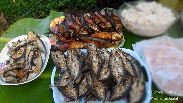 Calbayog-Samar-Seafood