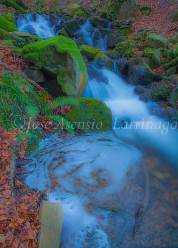 Parque Natural de Gorbeia   #DePaseoConLarri #Flickr      -2759