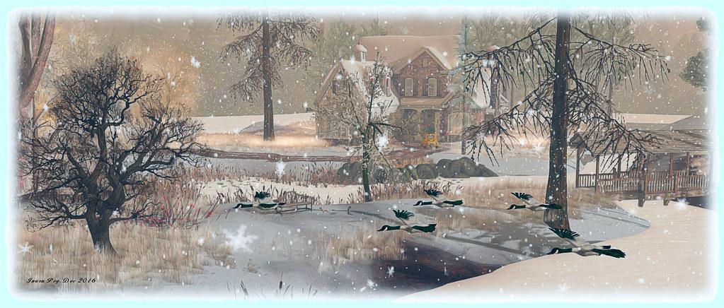 Rosemoor, Jadeite; Inara Pey, December 2016, on Flickr